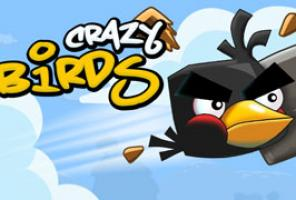 Crazy Paukščiai