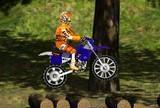 Pyktis motociklininkas 2